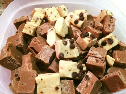 AdvoCare Protein Fudge